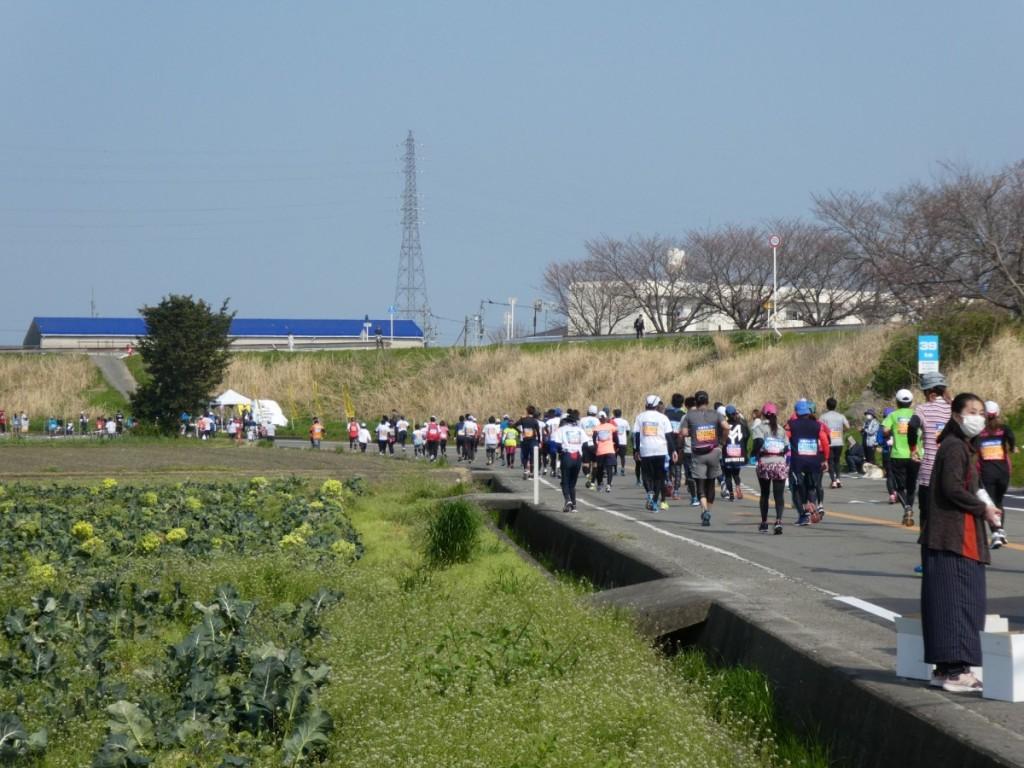 2018-3 とくしまマラソン9