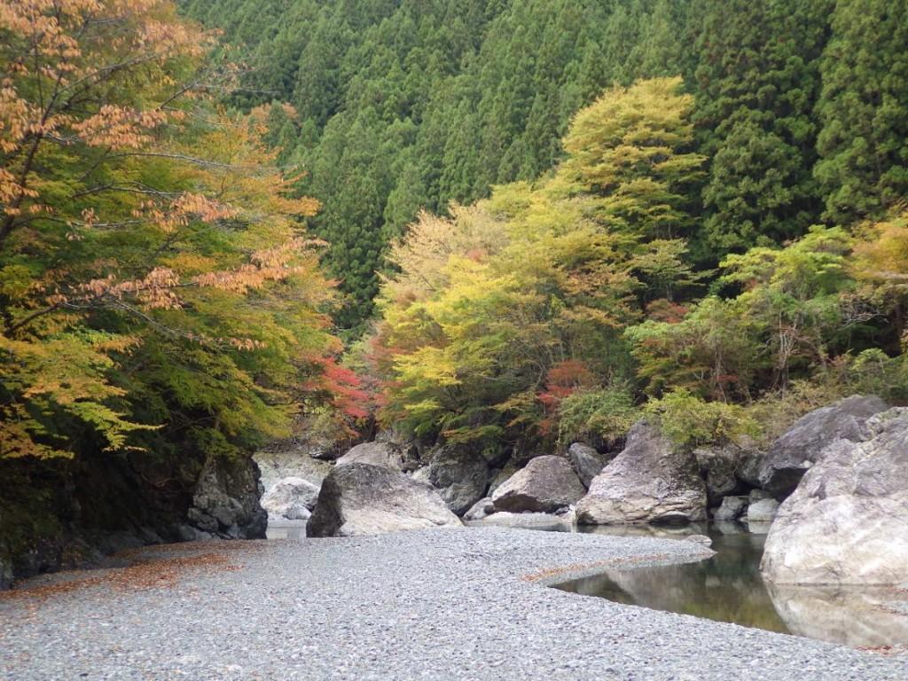 2018-11 岩倉 (3)