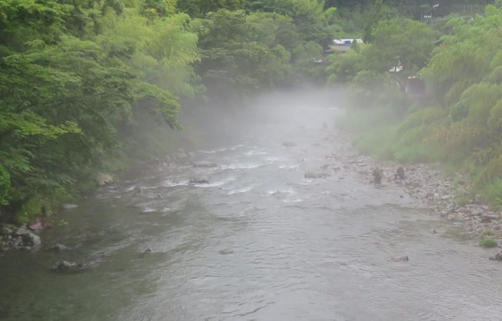2019-7 アユ解禁2